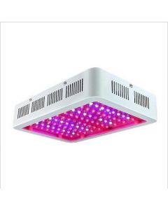 LED poussez la lumière pleine spectre 300W 600W 1000W pour les serres de tente d'intérieur Lampe de croissance des plantes hydroponiques